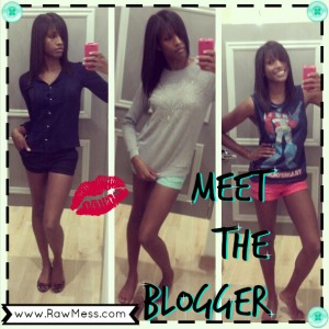 Meet the Blogger thumbnail