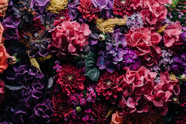 the Flower Gods
